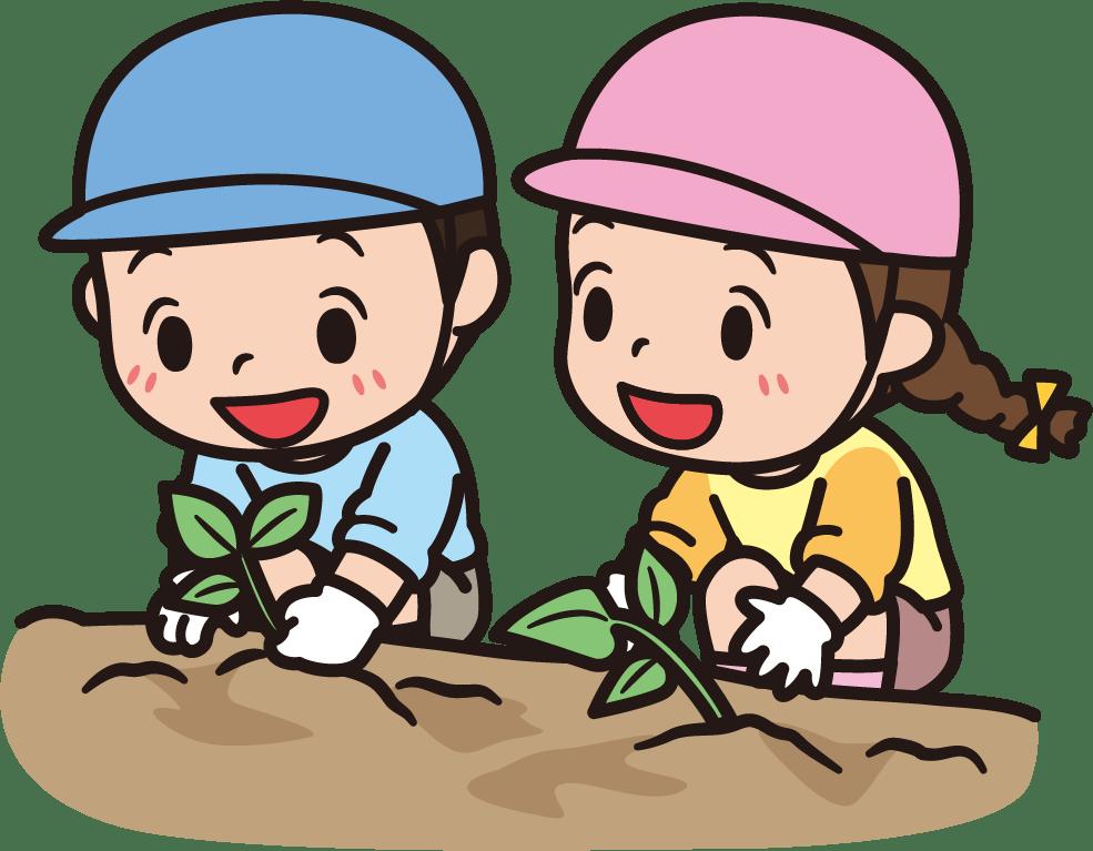 🌱野菜の苗植え🌱