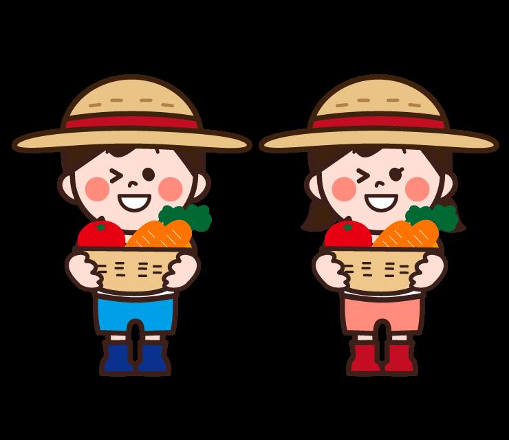🍅🍆夏野菜収穫🍉🥒